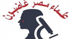 #علماء_مصر_غاضبون