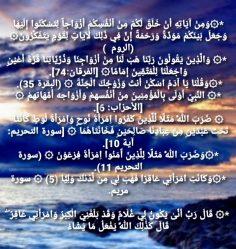 { الإعجاز اللغوي في ألقرآن }  • الفرق بين الزوجة و المرأة في القرآن الكريم •