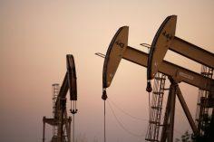 (CNN) إنهيار أسعار النفط الأمريكي إلى سالب 37 لأول مرة في التاريخ