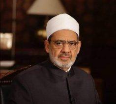 الأمام الأكبر يدعو المجتمع الدولي إلى مساندة مصر لضمان حقوقها المائية
